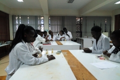 Nutrition and Dietetics Students in the lab